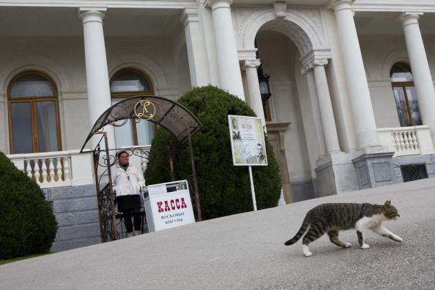 Cat walks outside Livadia Palace where US President Franklin D. Roosevelt, British Prime Minister Winston Churchill and Soviet leader Joseph Stalin held Yalta Conference in Yalta