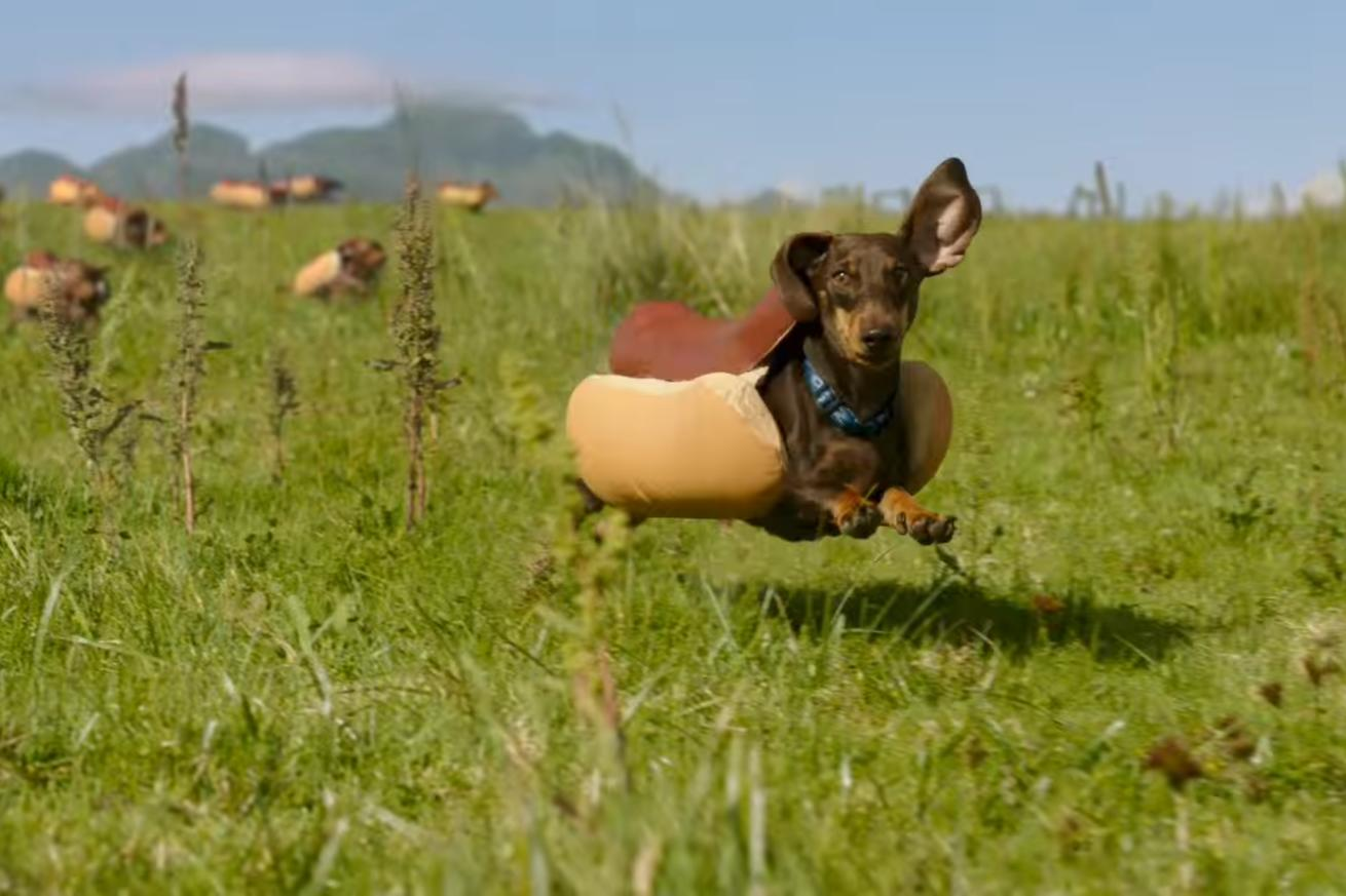 Super Bowl commercials 2016: watch all of the year's best and worst ads