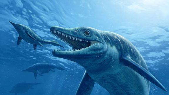 'T. Rex' of the Seas Called First Top Killer