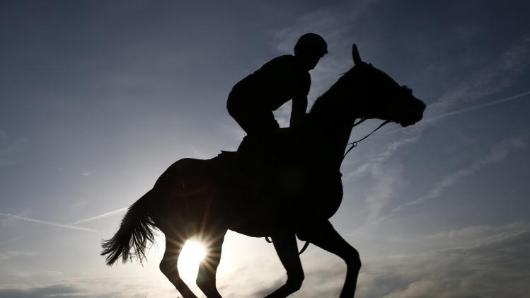 A horse and rider are silhouetted against the morning sun as they ride out on the gallops at the Cheltenham racecourse