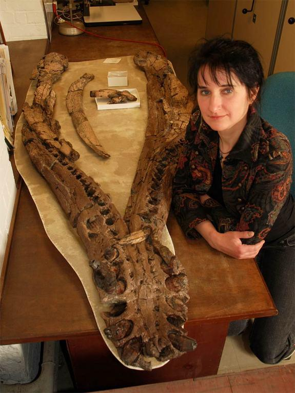 Ancient 'Loch Ness Monster' Suffered Arthritis