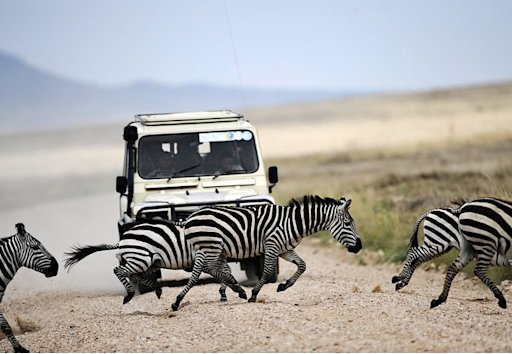 Tanzania still plans to build a highway through the iconic Serengeti park, a minister said Thursday