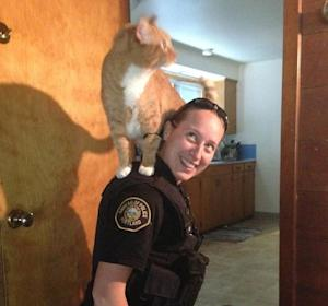 In this June 23, 2014 photo provided by the Portland Police Bureau Officer, Sarah Kerwin is seen with a cat in Portland, Ore. Sgt. Pete Simpson says police were called when a woman returned home from work to find her house burglarized. When police entered the home to search for a suspect, Kerwin noted broken glass on the floors of the basement and a bathroom. Kerwin picked up the cat to make sure it didn't step in the glass. The cat happily climbed onto Kerwin's shoulders and stayed there as police finished searching the house. (AP Photo/Portland Police Bureau)