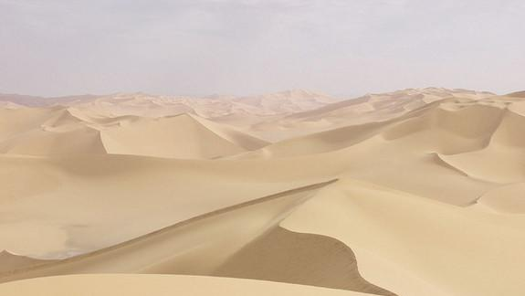 Sahara Went from Green to Desert in a Flash