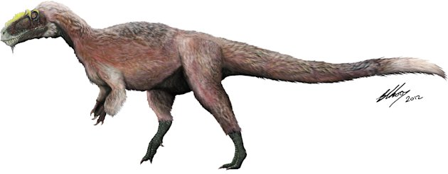 This artist concept provided by the Beijing Institute of Vertebrate Paleontology and Paleoanthropology shows a new species of tyrannosaur, Y. huali, discovered in China. A new study published in the journal Nature found that Y. huali, an earlier relative of T. rex had a feathery coat, suggesting that the king of dinosaurs may have also been fuzzy. (AP Photo/Beijing Institute of Vertebrate Paleontology and Paleoanthropology, Brian Choo)