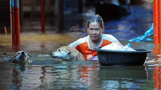 Bangkok Flooding: Officials Hope Floodwalls Will Protect Thai Capital