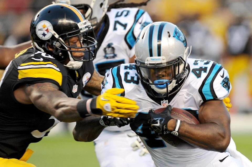 Panthers blank Steelers 10-0 in preseason finale