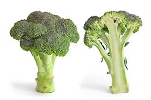 Five Super Foods for Keeping your Bones Healthy