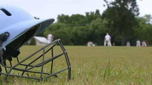 Local cricket hit out