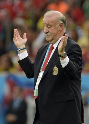 Del Bosque mum on future despite Spain backing