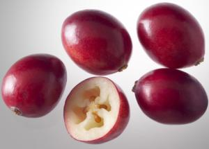 "Scientists Put Their ""Weight"" Behind the Cranberry"