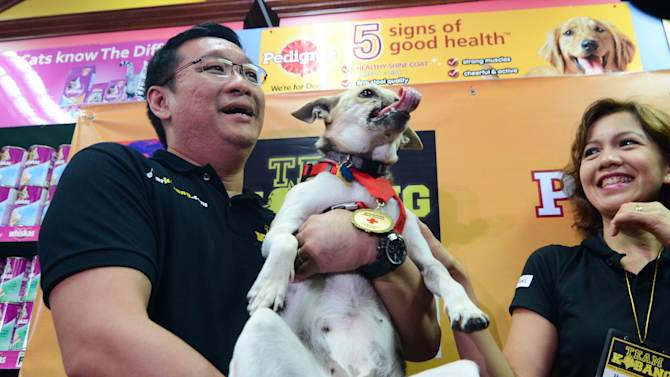 Hero Dog Kabang Returns Home After Surgery