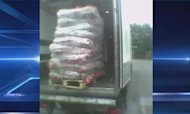 Horsemeat: Driver Lifts Lid On Breaches