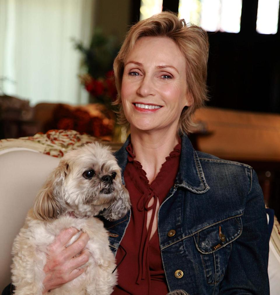 "In this March 9, 2013 photo released by Shelter Me shows series host Jane Lynch posing with Olivia, an Lhasa Apso breed, in Venice, Calif. ""Shelter Me"" is an inspiring PBS series that celebrates shelter pets with positive and uplifting stories. (AP Photo/Austin Smoak, Shelter Me)"
