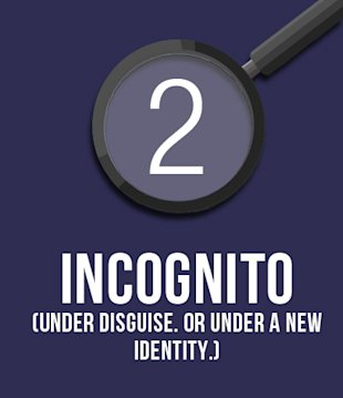 2. Incognito. (Under disguise. Or under a new identity.)