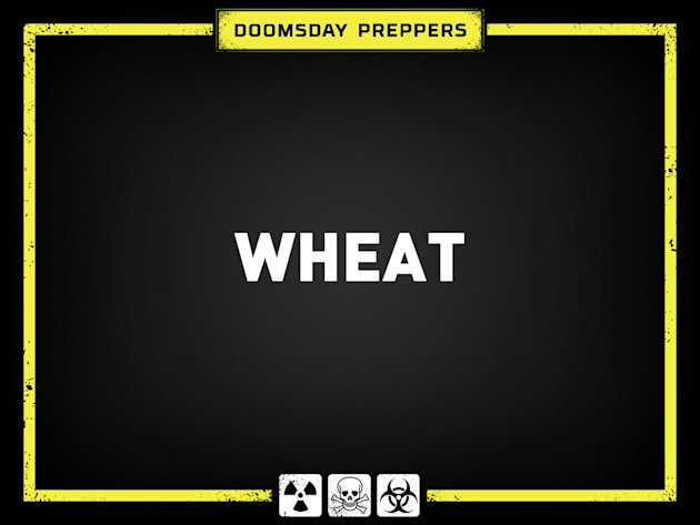 Answer 8: Wheat