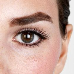 5 minutes to bolder brows