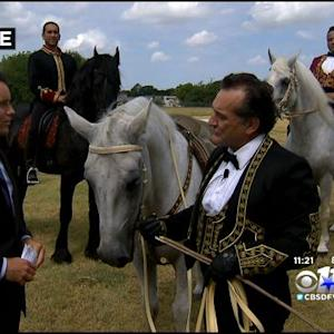 'The Gala Of The Royal Horses' Perform In Dallas