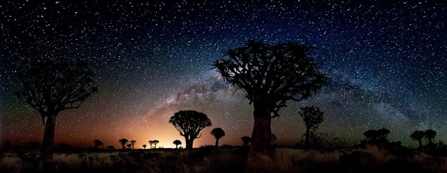 'Quiver Trees by Night' …
