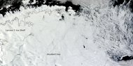 Sea ice is pushing farther north than usual this year in parts of Antarctica, as shown in this Feb. 22 satellite image from NASA's Terra satellite.
