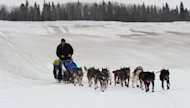 John Baker drives his dog team up the Yukon River towards the Iditarod checkpoint in Anvik, Alaska on Friday, March 8, 2013, during the Iditarod Trail Sled Dog Race. (AP Photo/Anchorage Daily News, Bill Roth)