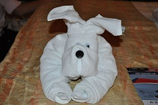 Floppy Eared Puppy Dog Towel