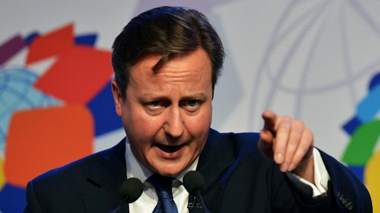 British Prime Minister David Cameron speaks during a news conference in Colombo on November 16, 2013