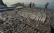 "Shark fins drying in the sun cover the roof of a factory building in Hong Kong on January 2, 2013. The images have provoked outrage, prompting environmentalists to call for curbs on what they describe as a ""barbaric"" trade"
