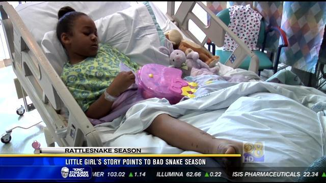Little girl's story points to bad snake season