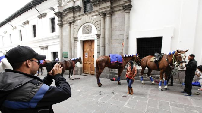 A woman poses for a photo in front of military horses of the Presidential Security Service, which are being prepared for a change of palace military guard parade in Quito