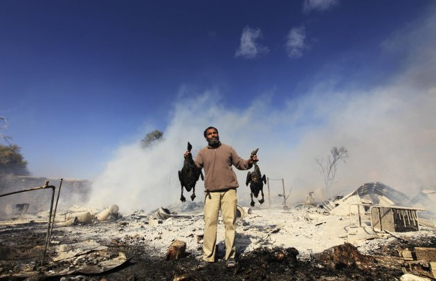 A man holds two burned birds after a fire went off in a compound for homeless Libyan families in Benghazi