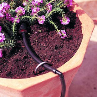 A drip-irrigation system
