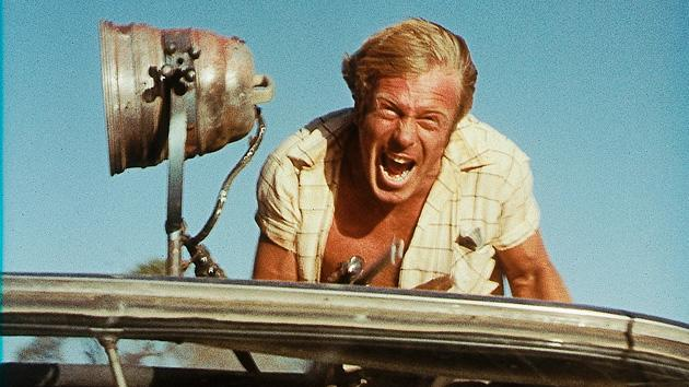 Cult Corner Wake in Fright 630