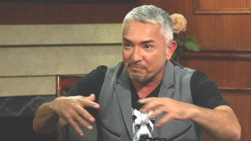 Cesar Milan On How Dogs Process Grief