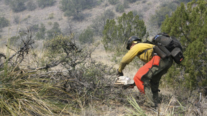 A firefighter from the Granite Mountain Hotshots of Prescott, Ariz., clears brush along a ridge line outside Mogollon, New Mexico, Saturday, June 2, 2012, in an effort to manage and contain the Whitewater-Baldy fire which has burned more than 354 square miles of the Gila National Forest in New Mexico. Unlike last year's megafires in New Mexico and Arizona, this blaze is burning in territory that has been frequently blackened under the watchful eye of the Gila's fire managers.  (AP Photo/U.S. Forest Service, Tara Ross)
