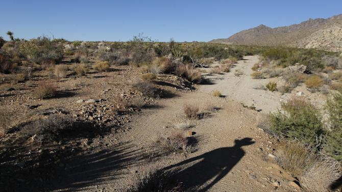 """In this Oct. 19, 2011 photo, Seth Shteir, a California Desert Field Representative for the National Parks Conservation Association, hikes to a natural spring at the Mojave National Preserve near Kelso, Calif.  By tapping into an aquifer the size of Rhode Island under a 35,000-acre Cadiz ranch, proponents say they can supply 400,000 people with drinking water in only a few years. """"There's a lot of unknowns here but we think this project has the potential to adversely affect air quality, draw down water resources and alter the flow of groundwater beneath the Mojave Preserve,"""" says Shteir, whose association plans to scrutinize an environmental review of the project, expected to be released this month. (AP Photo/Chris Carlson)"""
