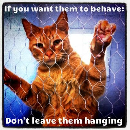 Don't Leave Them Hanging!