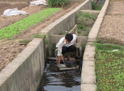 Nước cống đen ngòm này là nguồn tưới chủ yếu của người trồng rau ở xã Vĩnh Quỳnh