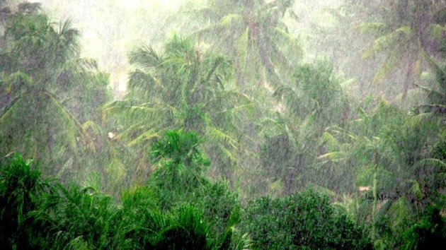 monsoon-pictures-10