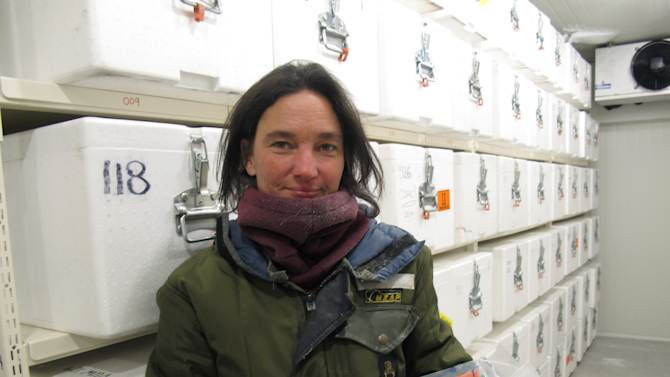 In this photo taken on March 20, 2013, scientist Nancy Bertler holds the final section of ice she collected from a half-mile under Antarctica's surface in a laboratory freezer, near Wellington, New Zealand. Antarctica's pristine habitat provides a laboratory for scientists studying the effects of climate change. (AP Photo/Nick Perry)