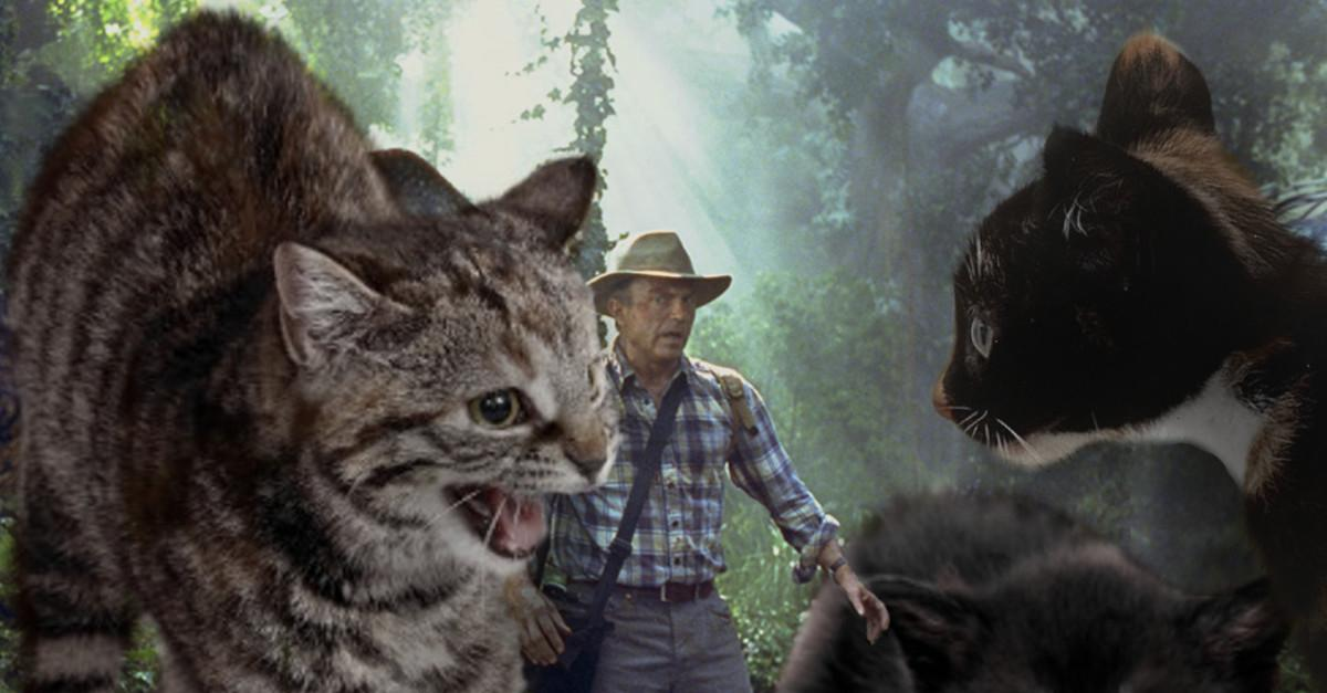 Jurassic World With Cats is 100 Times Better