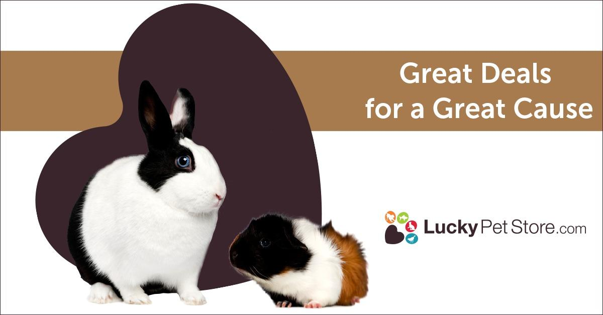 See Huge Savings on Small Pet Products