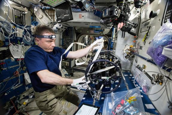New Journal Tackles the Science of Weightlessness