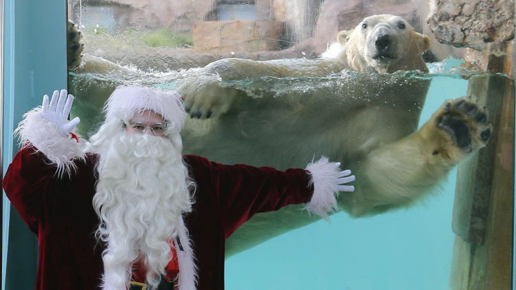 SANTA AND POLAR BEAR
