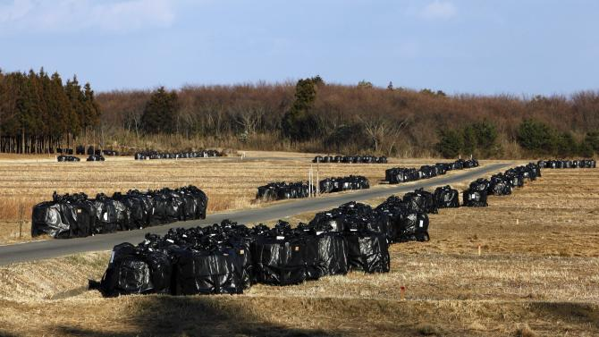 In this Tuesday, March 5, 2013 photo, bags of radiation-contaminated waste sit in fields in Naraha, just outside the exclusion zone surrounding the Fukushima Dai-ichi nuclear plant in Japan. Decontamination efforts have begun in the town but resident have not been allowed to return for more than brief visits. Two years after the triple calamities of earthquake, tsunami and nuclear disaster ravaged Japan's northeastern Pacific coast, radioactive and chemical contamination remains a threat as clean-up projects face troubles with organized crime and mishandling. (AP Photo/Greg Baker)
