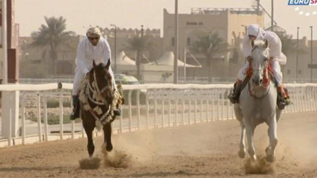 Horse Racing Time  : Doha 1/2