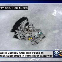 Police Find Dead Dog In Truck Submerged In NJ Waterway