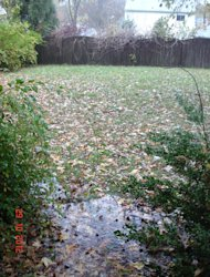 Water pooling right outside our house at the start of Hurricane Sandy