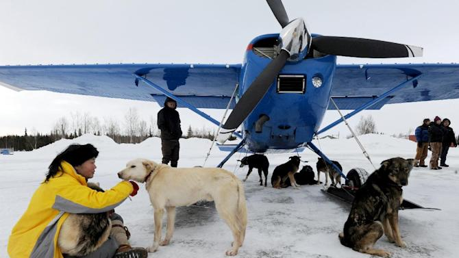 Kidron Flynn sits with dropped dogs getting ready to be loaded in an Iditarod Air Force plane during the Iditarod Trail Sled Dog Race, Wednesday, March 6, 2013, at Nikolai Airport in Nikolai, Alaska. (AP Photo/The Anchorage Daily News, Bill Roth)  LOCAL TV OUT (KTUU-TV, KTVA-TV) LOCAL PRINT OUT (THE ANCHORAGE PRESS, THE ALASKA DISPATCH)