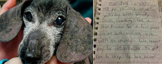 Dog left with tragic note (Leave No Paws Behind/Facebook)